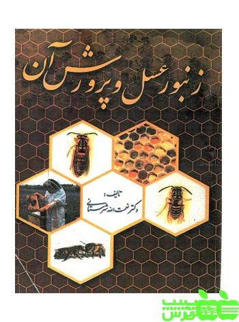 زنبور عسل و پرورش آن سپهر